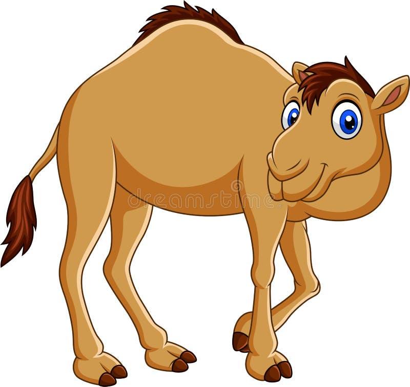 Верблюд шаржа изолированный на белой предпосылке бесплатная иллюстрация