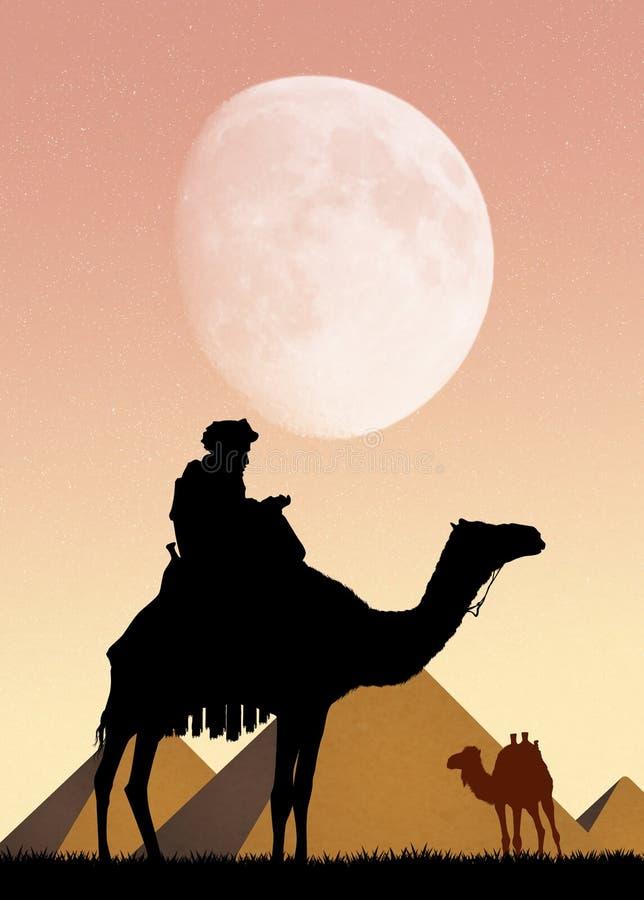 Верблюд и пирамиды в Египте бесплатная иллюстрация