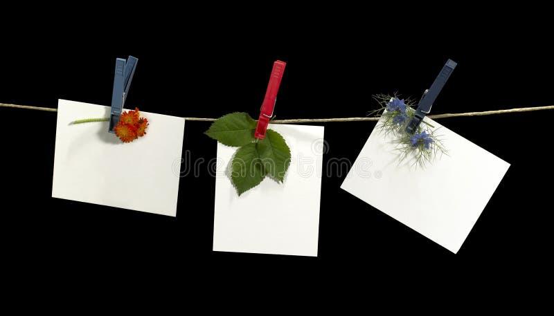 Веревка для белья и ярлыки с цветками стоковые изображения rf
