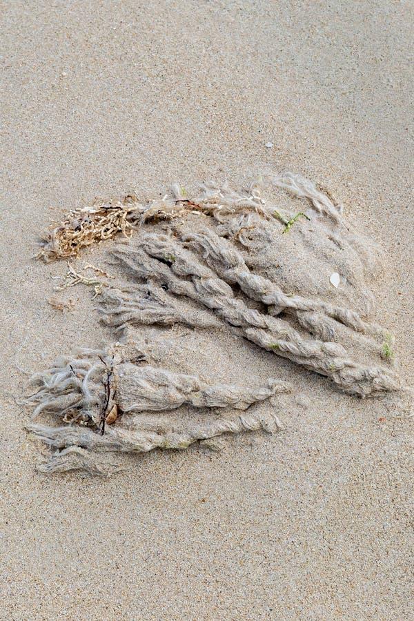 Веревочка и песок стоковое изображение