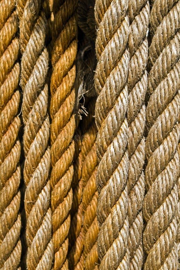 веревочки стоковые изображения