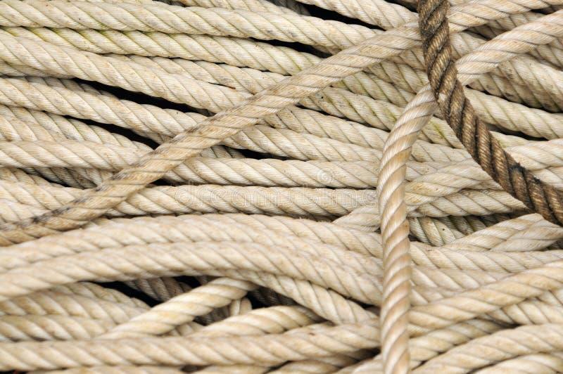 веревочки стоковые фотографии rf