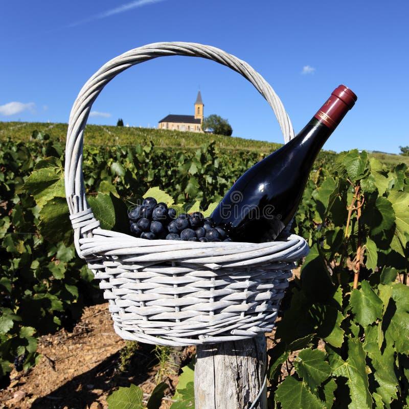 вероисповедное вино стоковое изображение