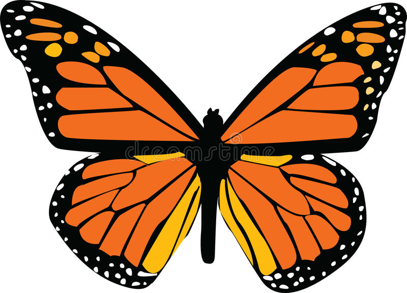 0 версий иллюстрации eps 8 бабочек vailable стоковые изображения rf