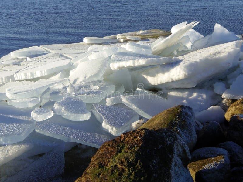 Вертел в зиме, Литва Curonian стоковое фото rf