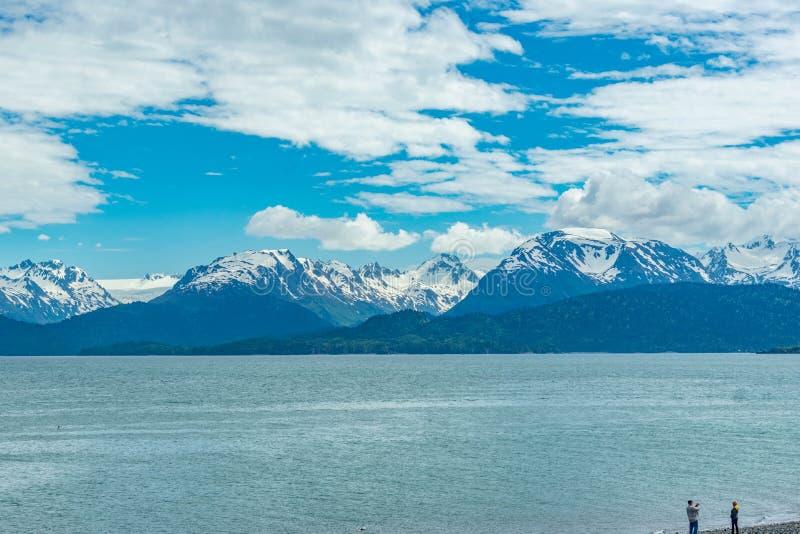 Вертел почтового голубя, Аляска стоковая фотография rf