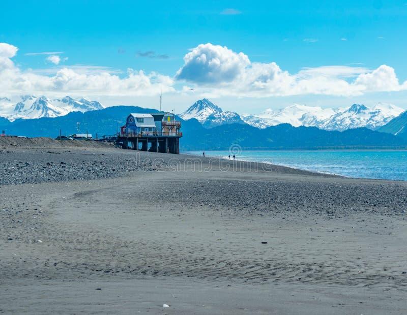 Вертел почтового голубя, Аляска стоковая фотография