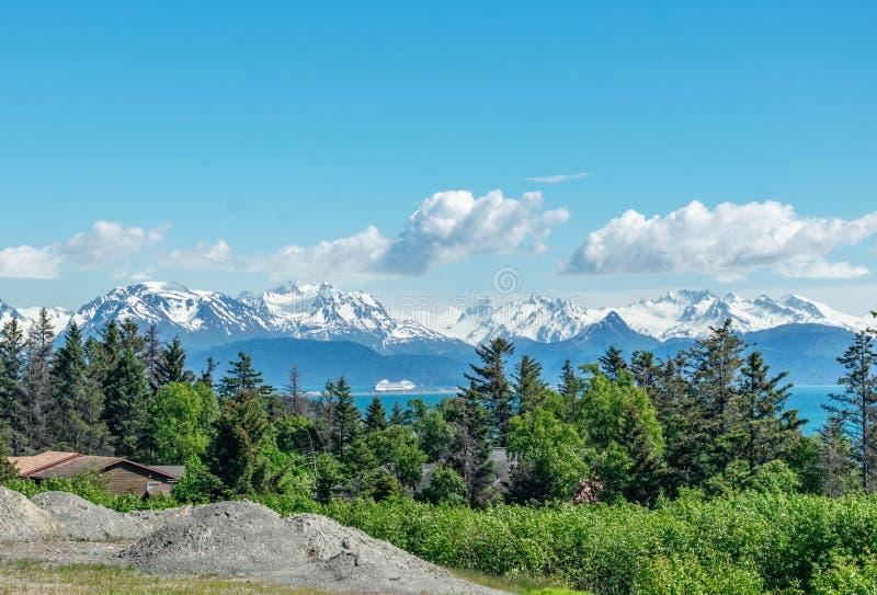 Вертел почтового голубя, Аляска стоковые фотографии rf
