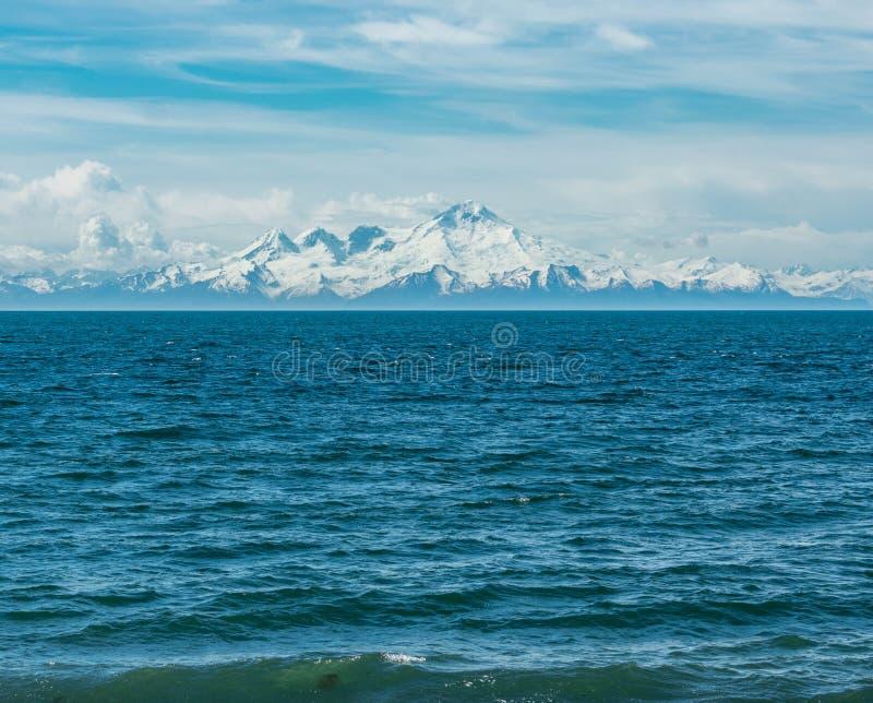 Вертел почтового голубя, Аляска стоковые изображения rf
