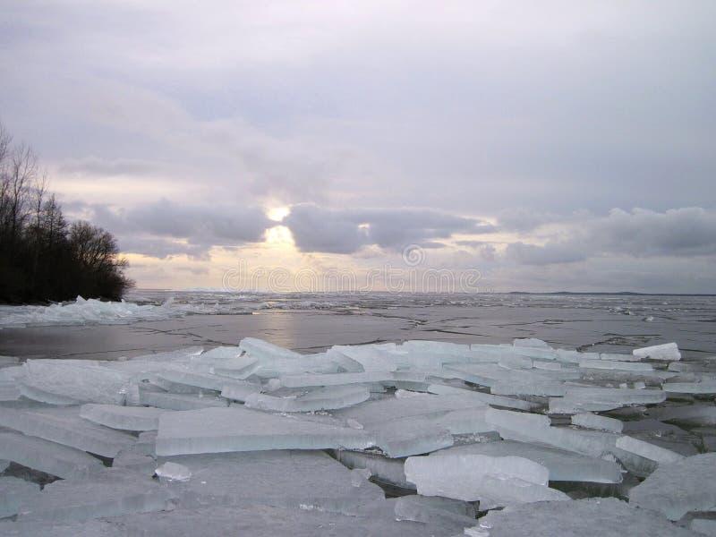 Вертел Curonian в льде зимы, Литве стоковая фотография rf