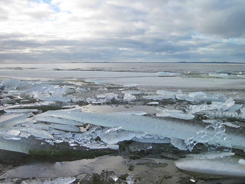 Вертел Curonian в льде зимы, Литве стоковое фото rf