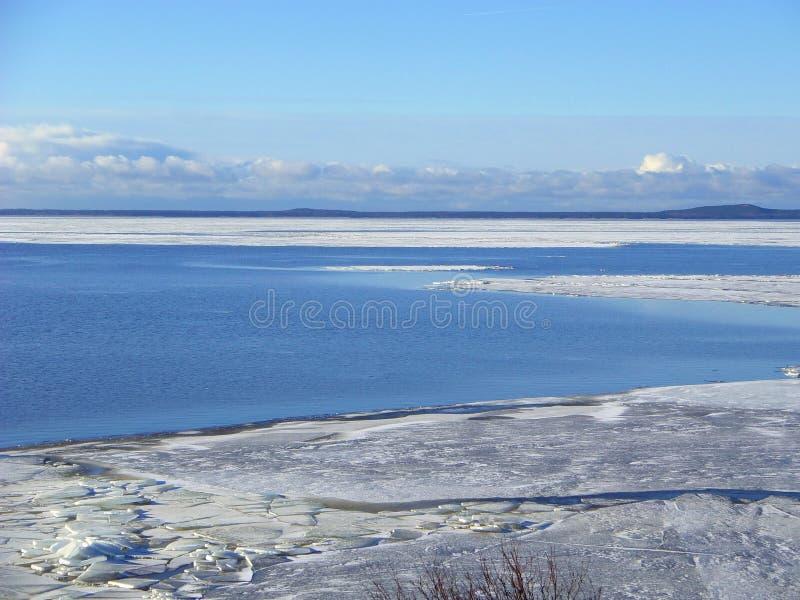 Вертел Curonian в льде зимы, Литве стоковое изображение