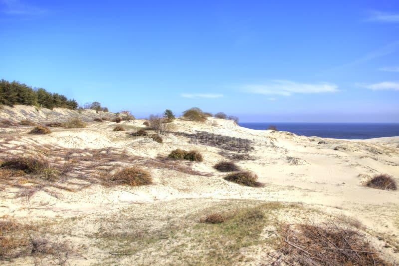 Вертел Curonian, Efa дюны стоковое фото rf