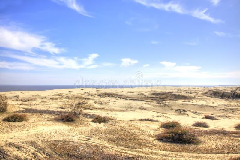 Вертел Curonian, Efa дюны стоковые фотографии rf