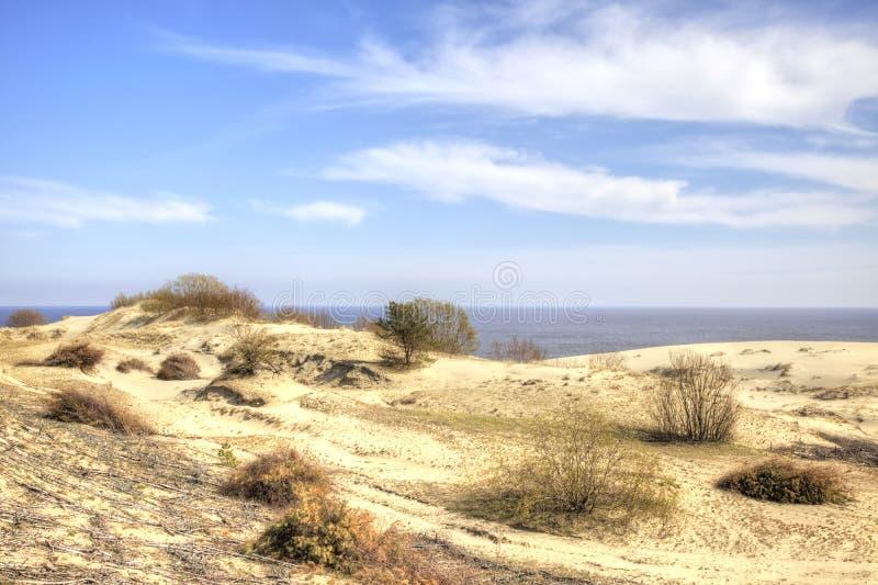 Вертел Curonian, Efa дюны стоковые фото