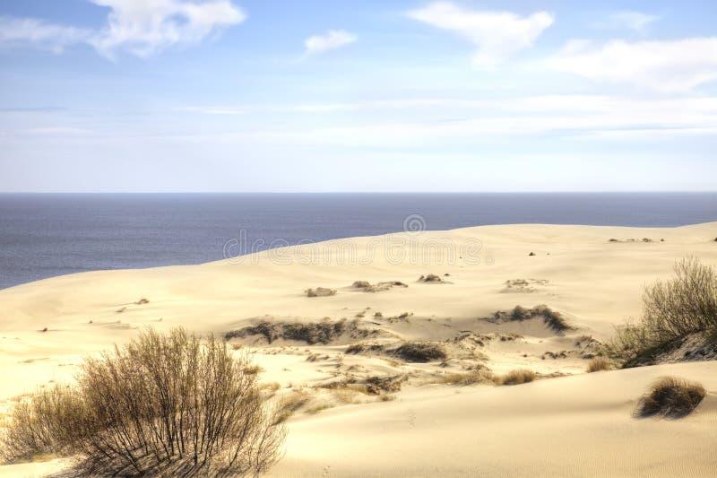 Вертел Curonian, Efa дюны стоковые изображения