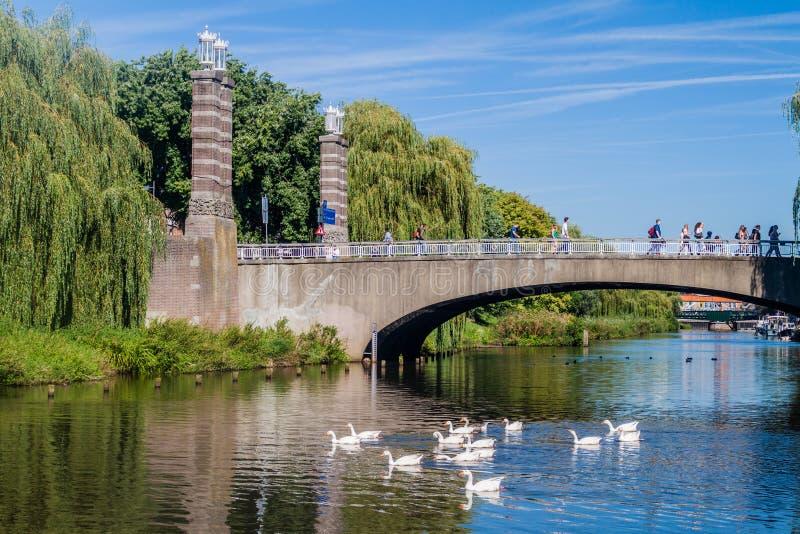 ВЕРТЕП BOSCH, НИДЕРЛАНД - 30-ОЕ АВГУСТА 2016: Мост над каналом в вертепе Bosch, Netherlan стоковое фото rf