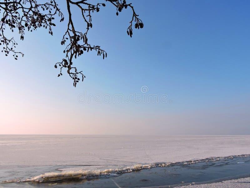 Вертел в зиме, Литва Curonian стоковые изображения