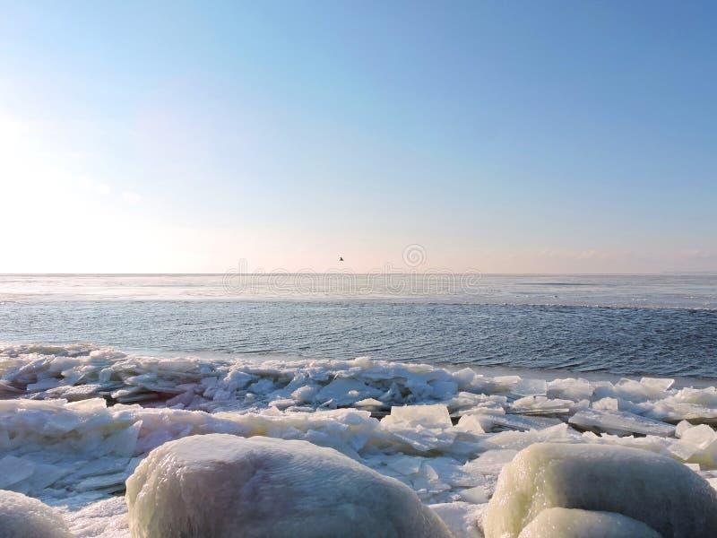 Вертел в зиме, Литва Curonian стоковые изображения rf