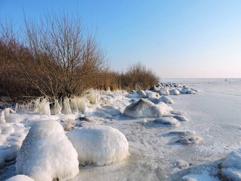 Вертел в зиме, Литва Curonian стоковое изображение rf