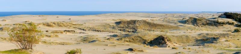 вертел моря прибалтийского свободного полета curonian стоковая фотография rf