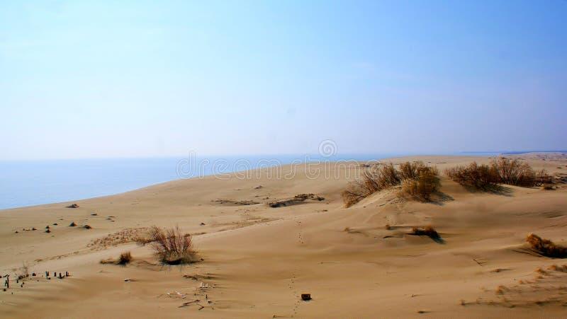вертел моря прибалтийского свободного полета curonian стоковое изображение rf