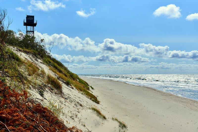 вертел моря прибалтийского свободного полета curonian стоковое изображение