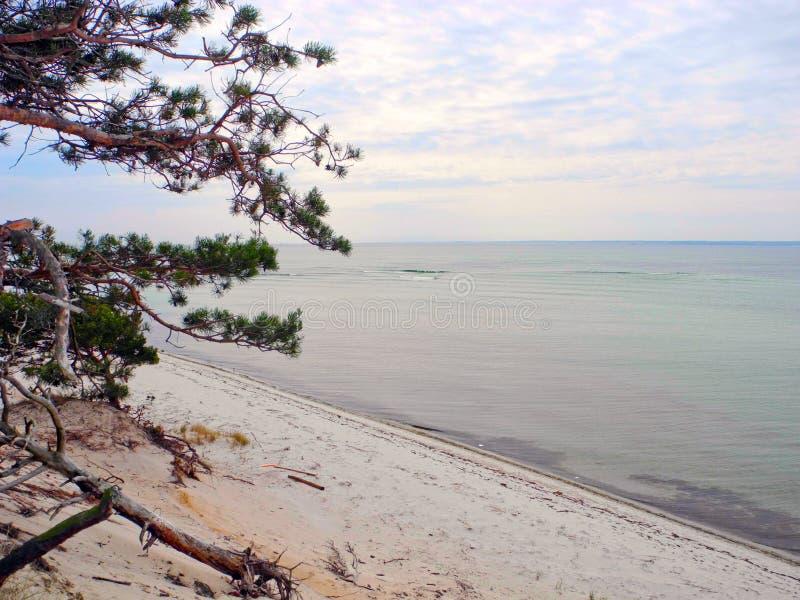 Вертел Hel пляжа стоковые изображения
