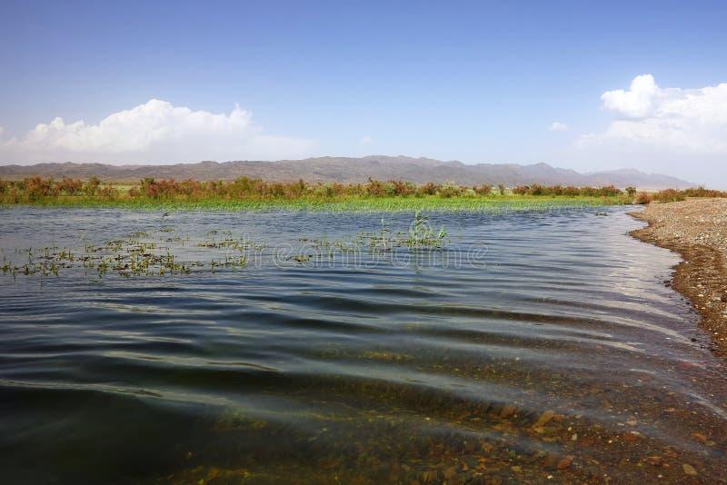 Вертел Sandy на озере стоковые фотографии rf
