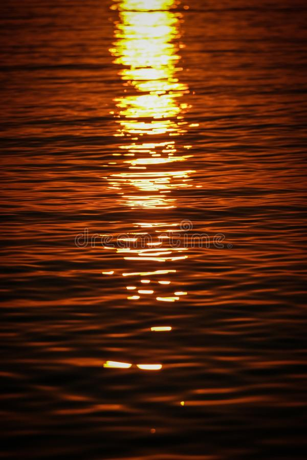 Вертикальная съемка волн моря отражая солнечный свет на заходе солнца стоковые фото