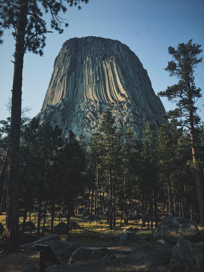 Вертикальная съемка высоких деревьев около дьяволов возвышается национальный монумент стоковое фото