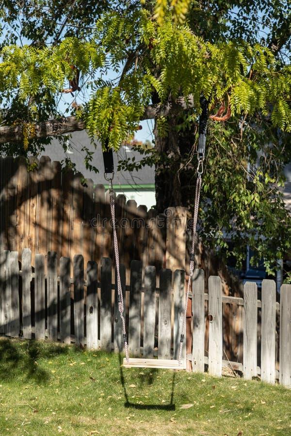 Вертикальное деревянное качание дерева вися во дворе стоковое изображение rf