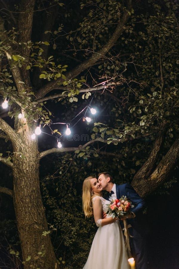 Вертикальное фото groom целуя невесту в щеке под деревом с лампами гирлянды стоковые фотографии rf