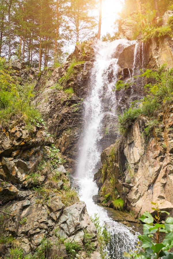 Вертикальный взгляд к высокому водопаду в горах Altai стоковая фотография rf