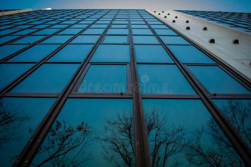 Вертикальный взгляд отраженного здания стоковое фото rf