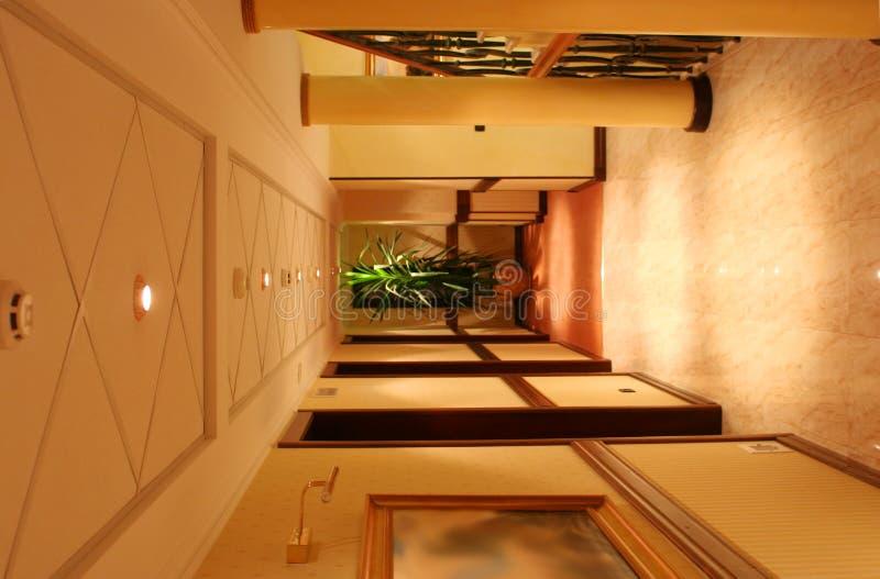 вертикаль завода гостиницы корридора колонки стоковые изображения