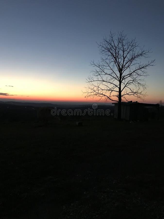 Вертикаль захода солнца Georgia стоковое изображение rf