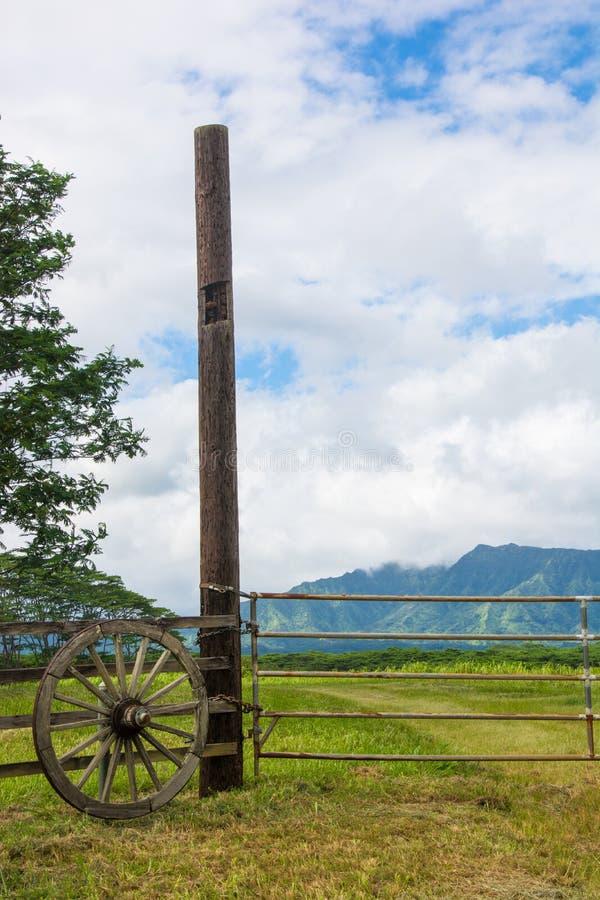Вертикальный взгляд сельских строба и колеса телеги стоковые изображения