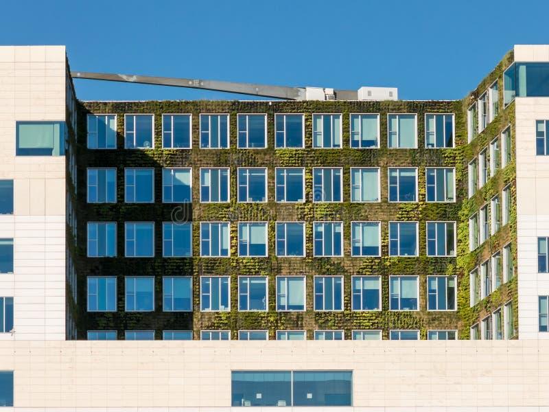 Вертикальный сад на современном здании в Амстердаме стоковое изображение rf