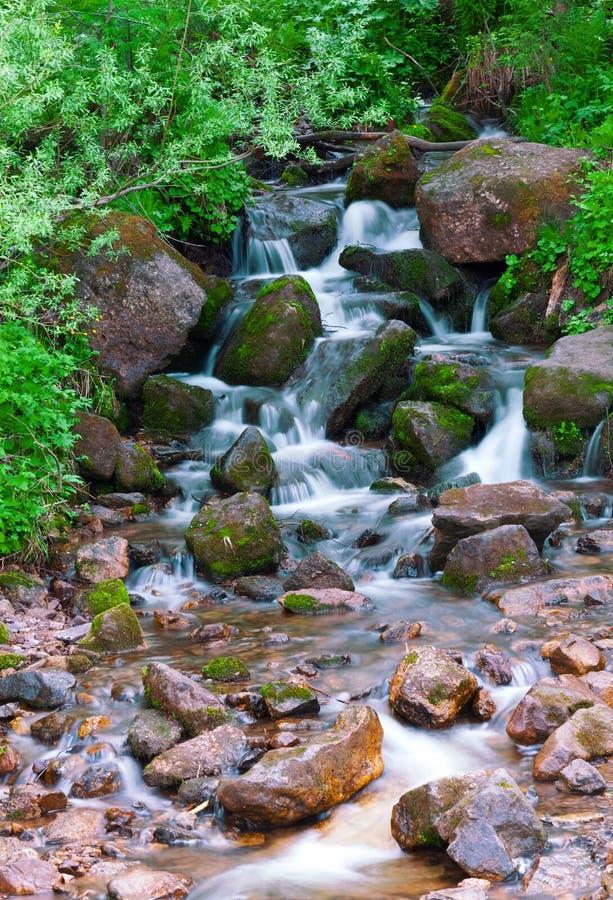 вертикаль реки панорамы горы 3 изображений hdr Быстрая вода потока Россия Ural стоковые фотографии rf