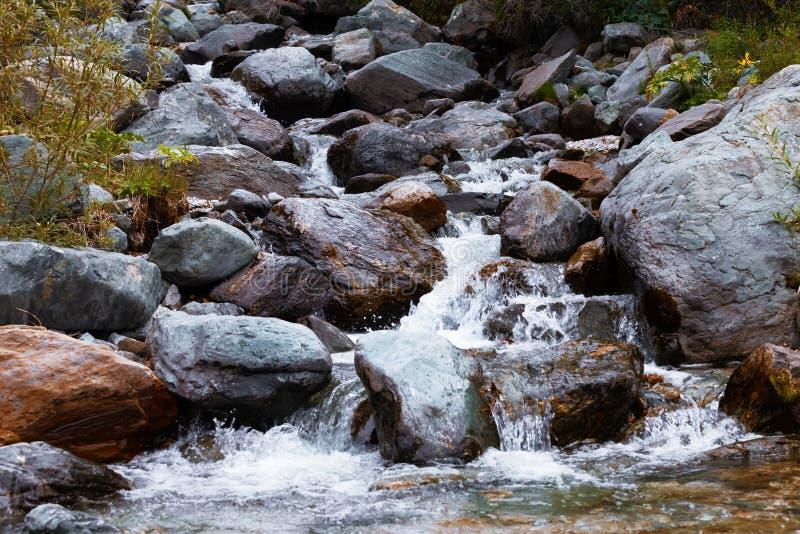 вертикаль реки панорамы горы 3 изображений hdr Быстрая вода потока также стоковые фото