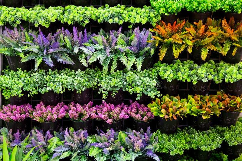 вертикаль сада стоковая фотография rf
