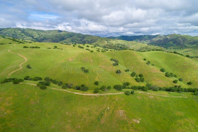 Верхняя зона живой природы заводи хлопока Близко к Лос Banos, Калифорния стоковая фотография rf