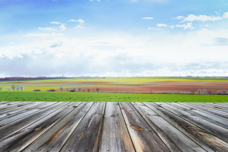 Верхняя часть деревянного стола с свежим зеленым полем и голубое небо в лете Космос для настоящего момента продукт стоковые фото