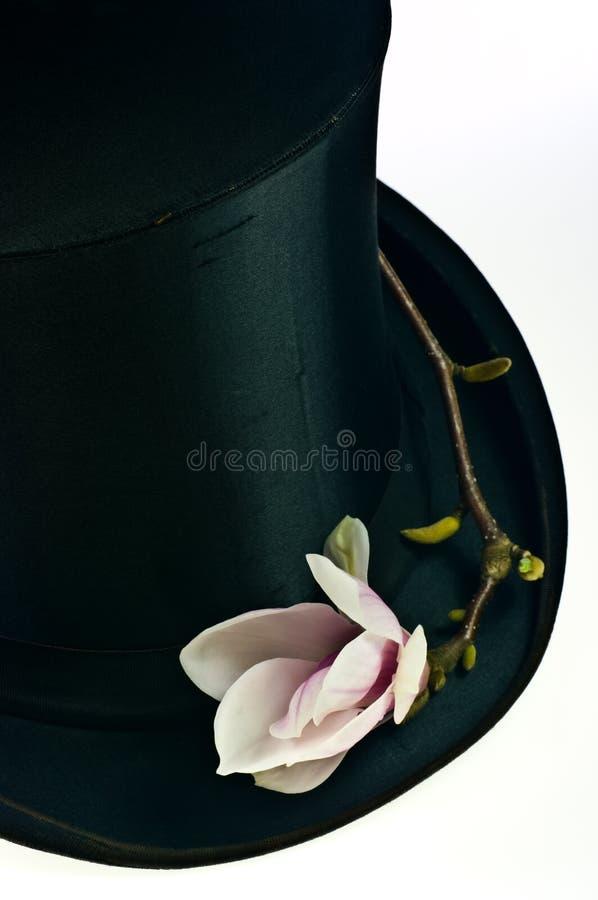 верхняя часть черной шляпы стоковые изображения rf