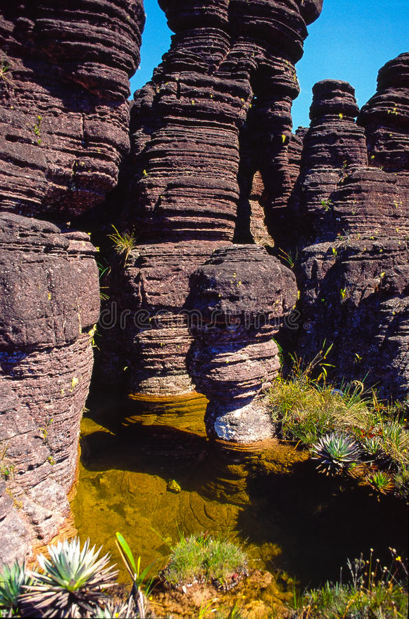 Верхняя часть Roraima Tepui стоковые изображения rf
