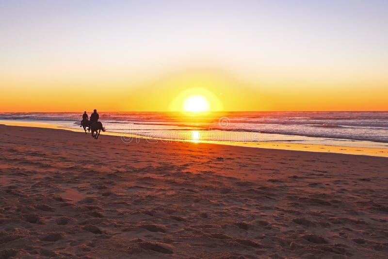 Верховая езда на пляже стоковая фотография
