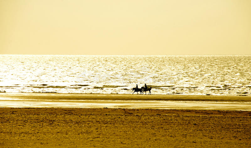 Верховая езда Образ жизни-пар каникул на заходе солнца стоковая фотография rf