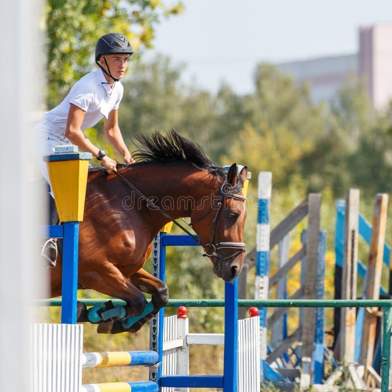Верховая лошадь молодого человека на событии выставки скача стоковая фотография