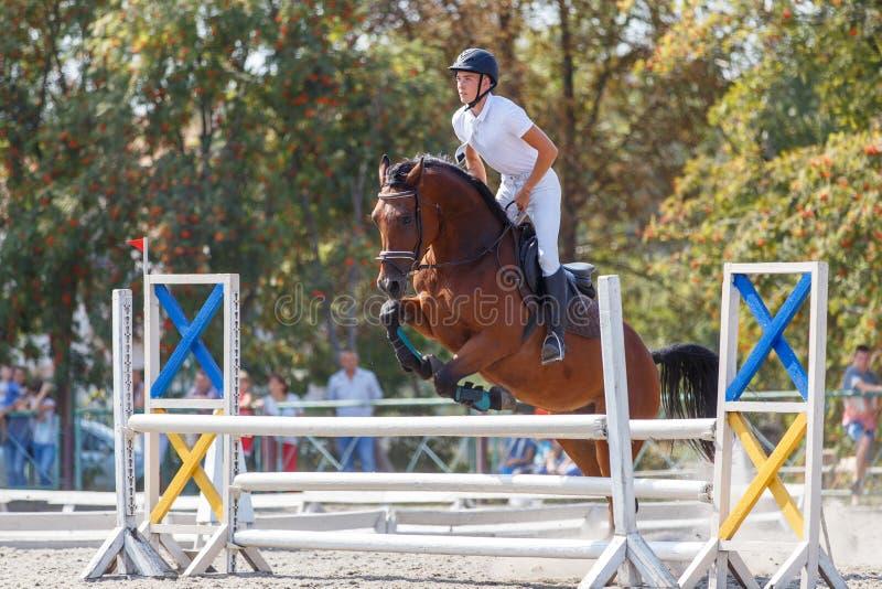 Верховая лошадь молодого человека на событии выставки скача стоковое изображение rf
